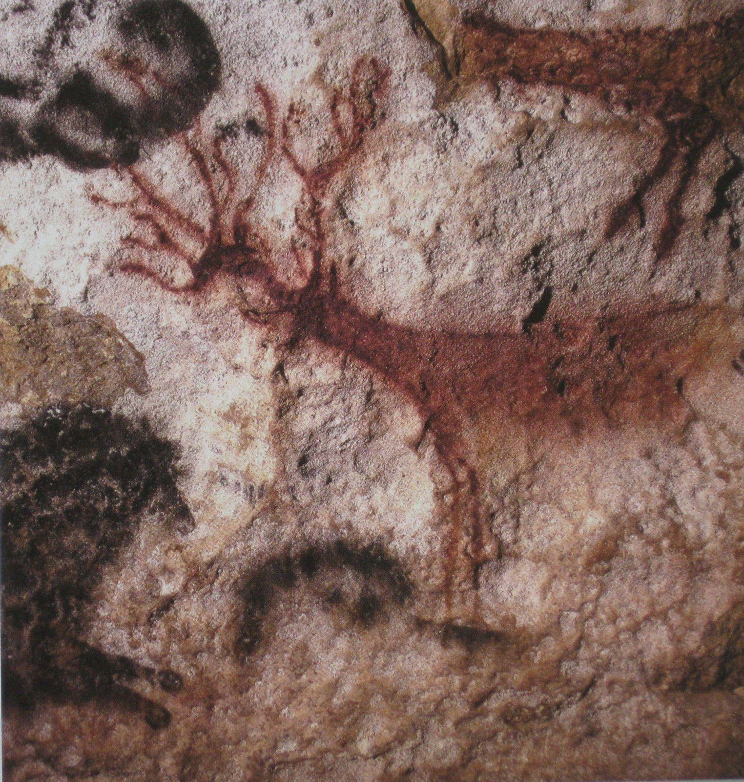 """les cerfs (en haut)  et """"les cerfs nageant"""" (photo du bas)"""