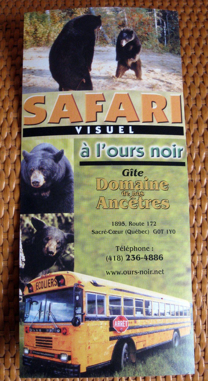 Les ours noirs ....