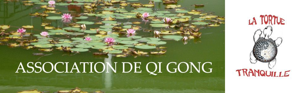 QI GONG  « Le bien-être et l'harmonie entre le corps et l'esprit »