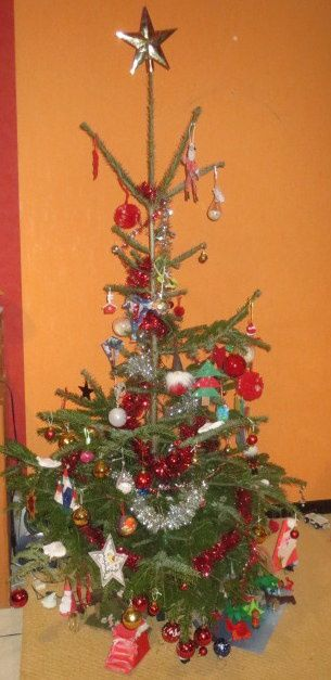 my christmas tree (1.5 /1.75m)