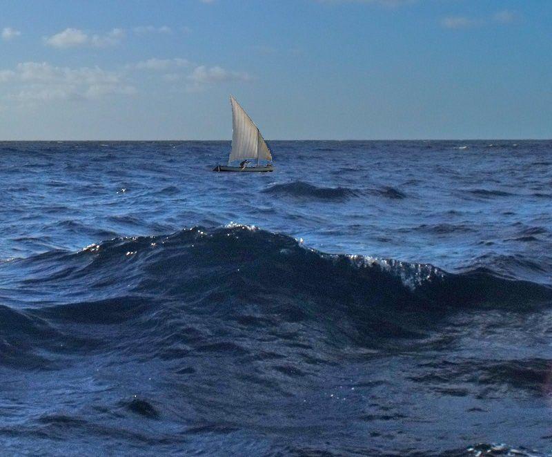 Fitness Odyssée : Etape N°481 (Océan Pacifique)