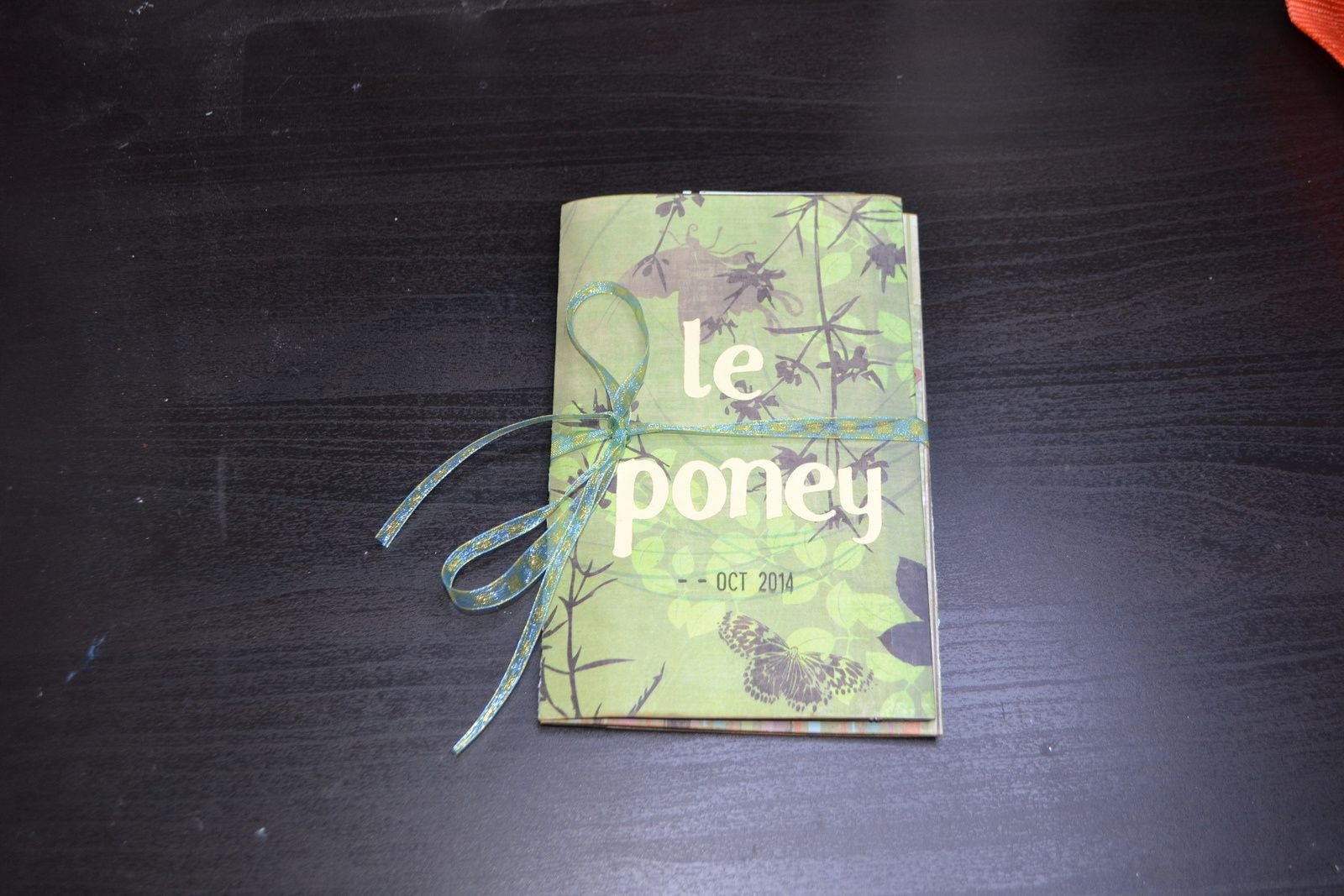 mini album poney (suite)