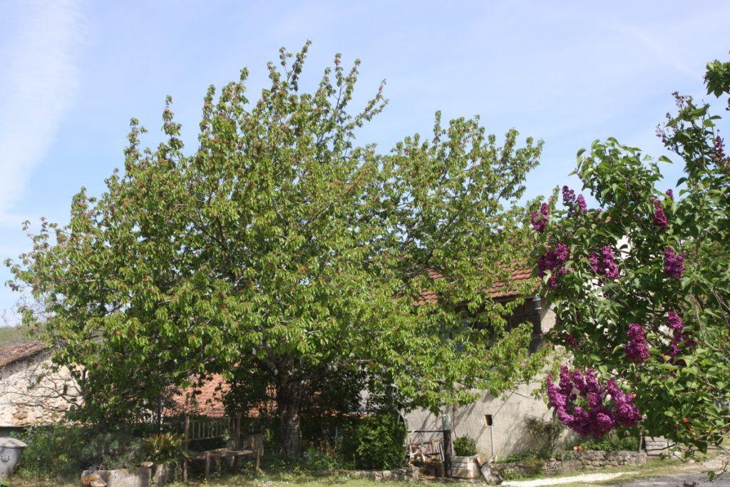 Séjour individuel d'art-thérapie analytique se ressourcer au coeur de la Dordogne.