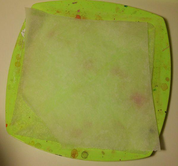 Découpez une feuille de papier essuie tout, pliez là afin qu'elle s'adapte à votre assiette en plastique, imbibez là d'eau. Il vous reste ensuite à découper une feuille de papier cuisson aux mêmes dimensions que celles de votre assiette et à la poser sur le papier imbibé.