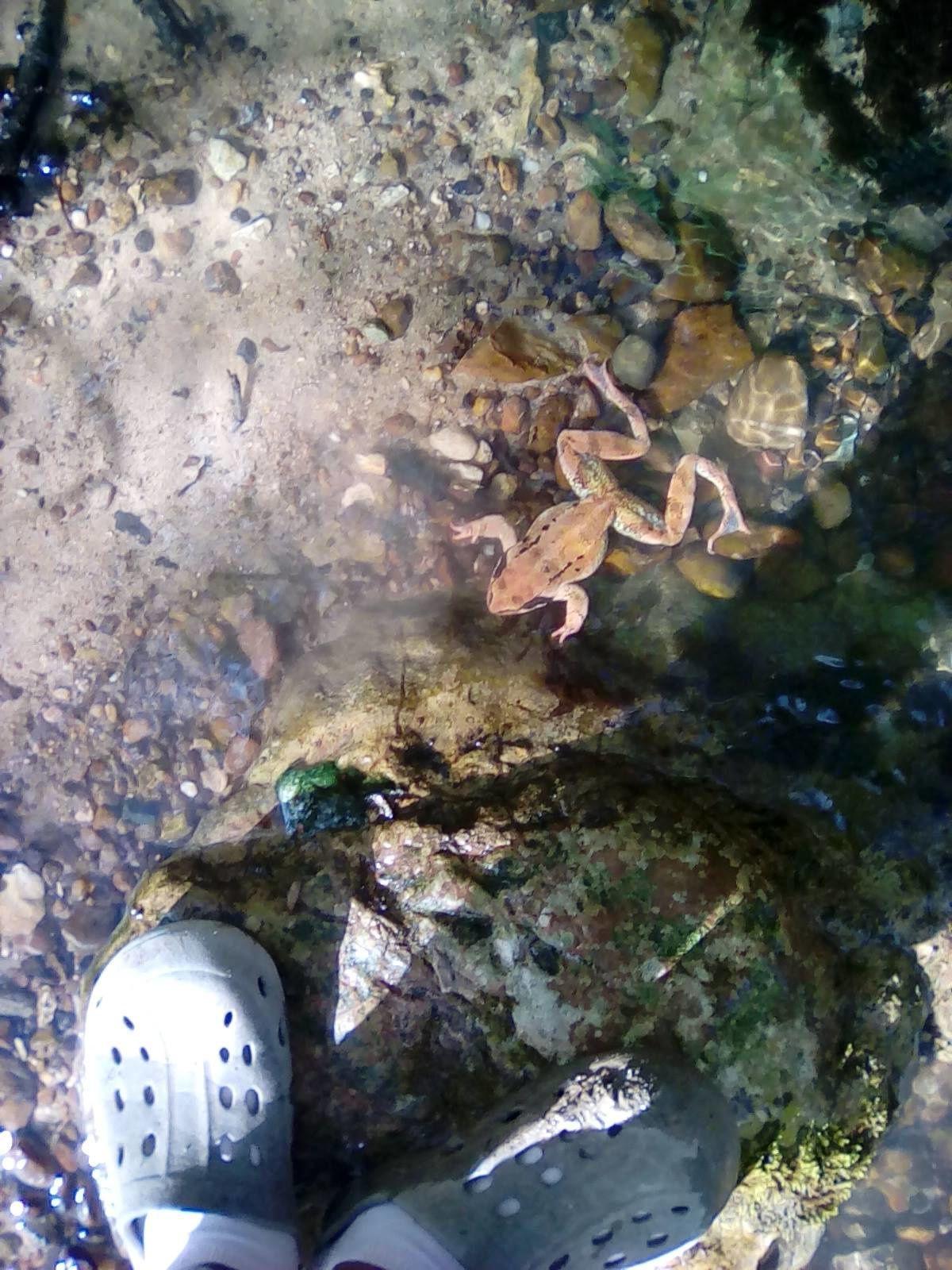 Deuxième jour : Les pieds dans l'eau.