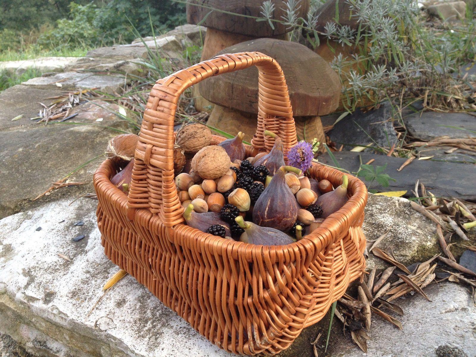 L'abondance de l'automne, l'héritage de nos Ancêtres.