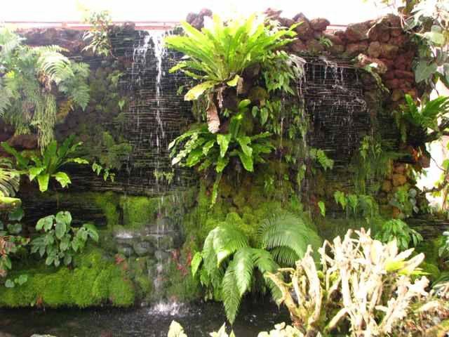 Bali - Jardin Botanique