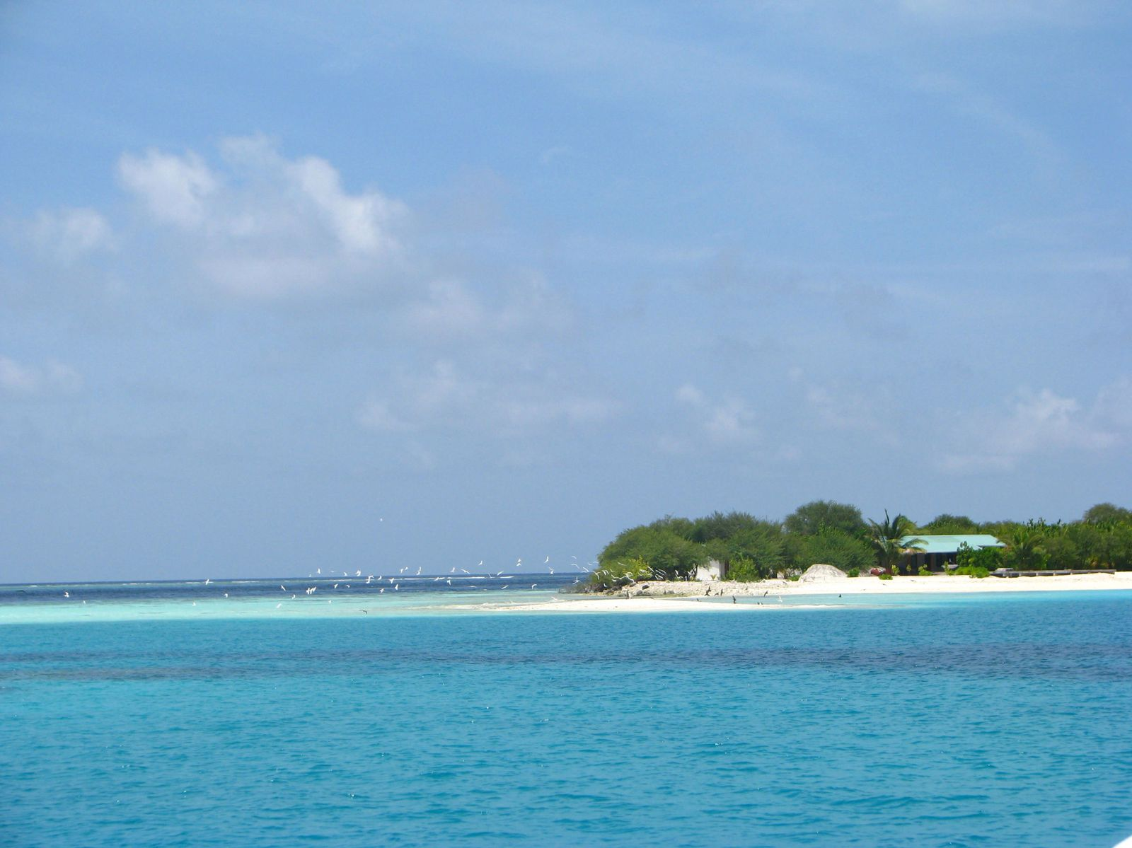 Maldives - qques excursions