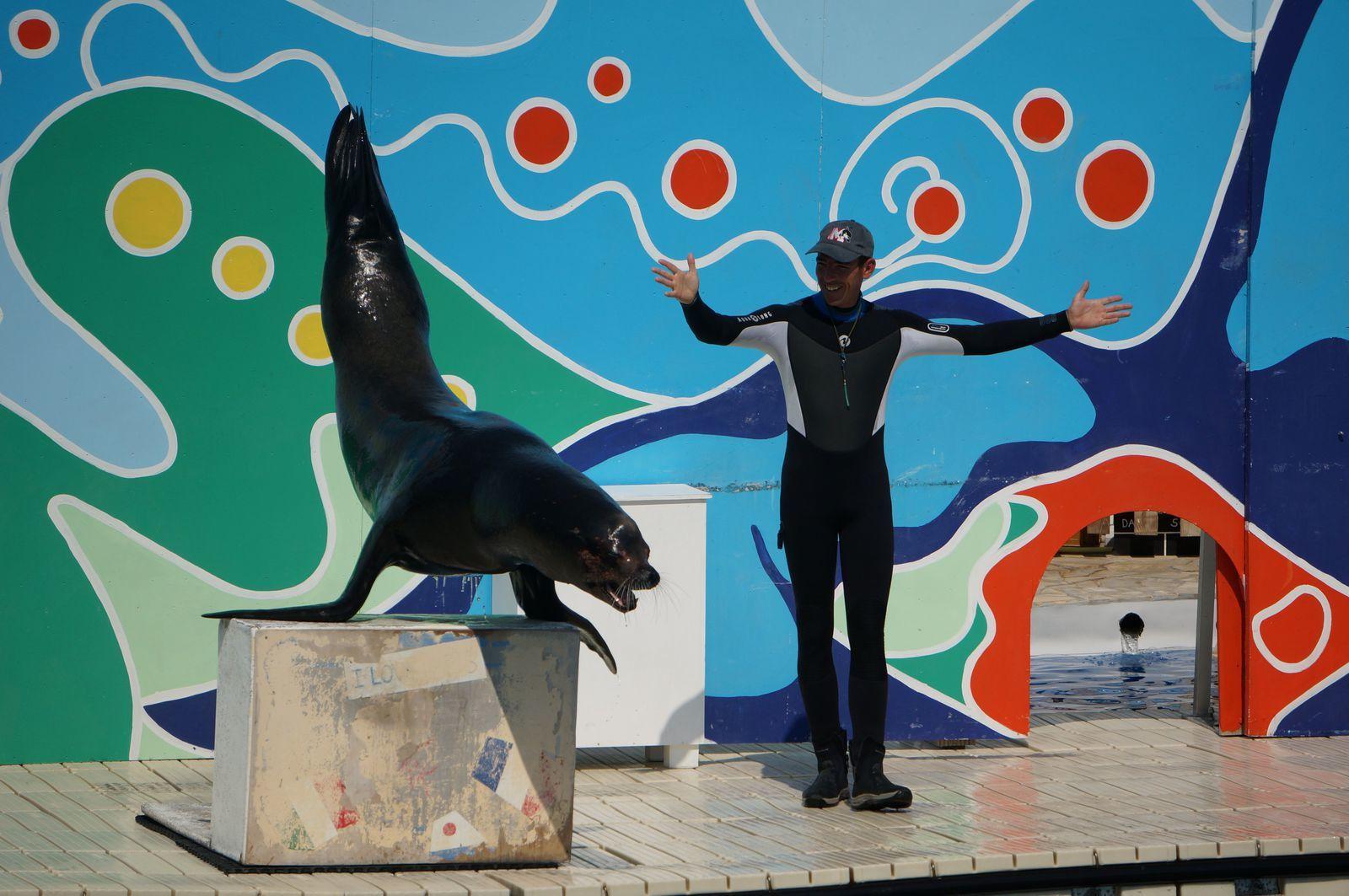 Mardi 10 juin - Antibes - Marineland