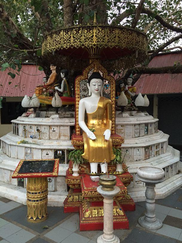 Thaïlande - Chiang Mai - jeudi 19 mars