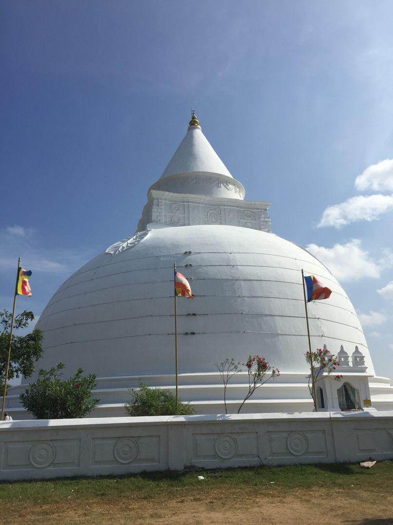 Sri Lanka - Ella - Tissamaharama - 20 mars