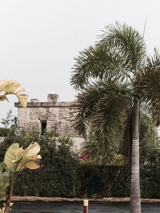 Etats-Unis - Everglades - samedi 27 juin