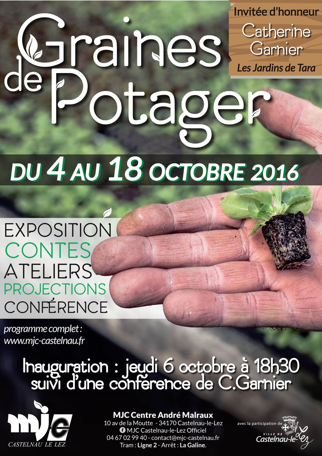 Graines de Potagers