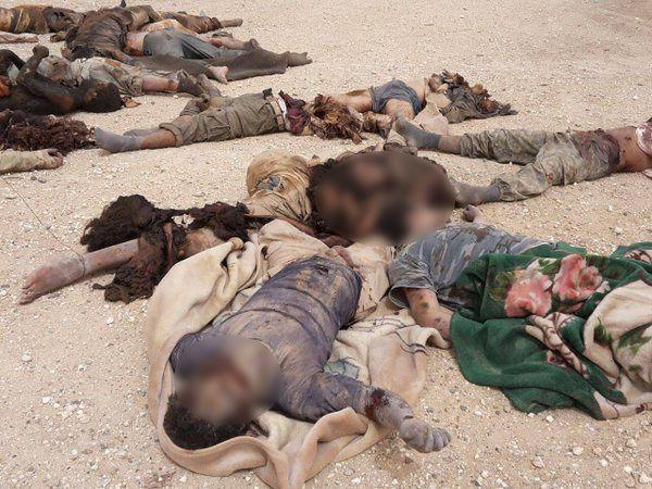 L'armée syrienne repousse les attaques de Daech près de Palmyre + Graphic PHOTOS: 200 ISIS Terrorists Killed in 3-Day Long Offensive in Deir Ezzor