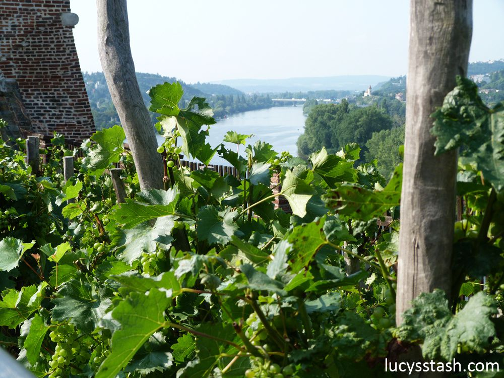 Views from/of Vyšehrad