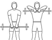 1)flat chest presses,2)seated shoulder presses,3)Single arm row,4)upright rows,5)Hammer curls,6)tricepts kickbacks