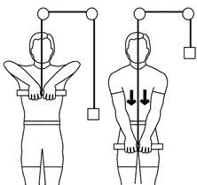 1) bicep curl,2) front raise,3) tricep row,4) chest press,5) choulder press,6) lat pull down,7) arm swing car j ai pas d elastique pour le dernier