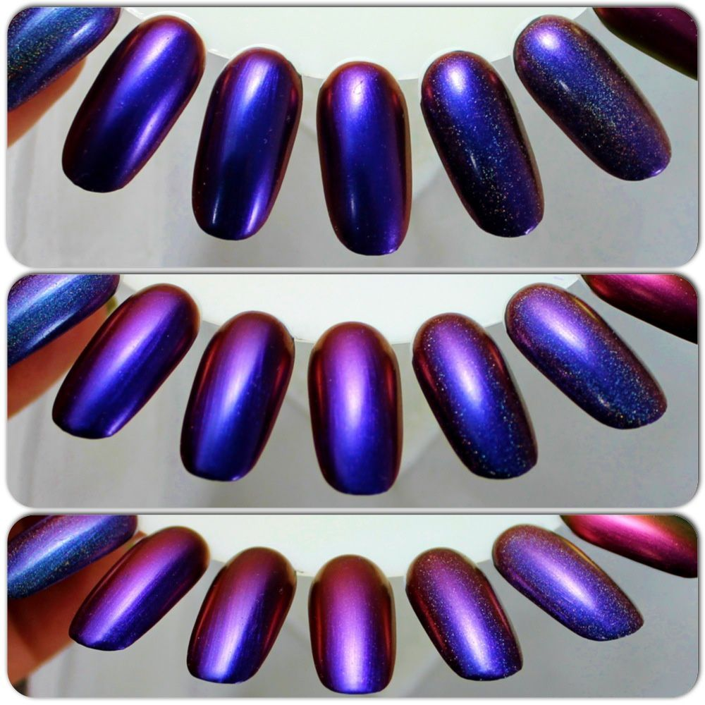 DL Celia / HS Dreamer / ILNP Cygnus Loop / EP Octopus Garden (H) / HS Sweet Dreams (H)