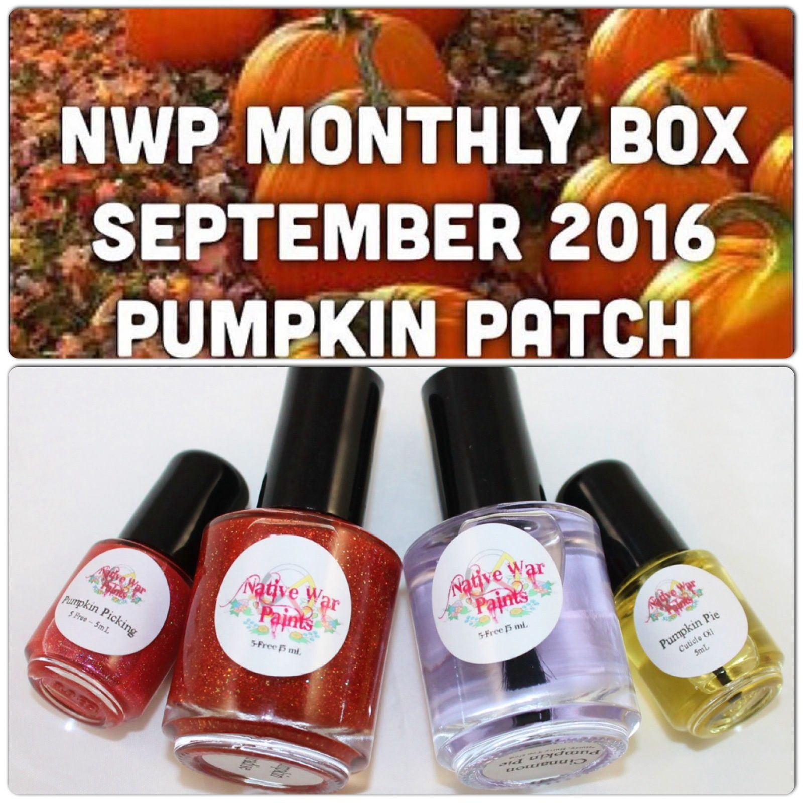 Native War Paints Monthly Box - September 2016 - Pumkin Patch