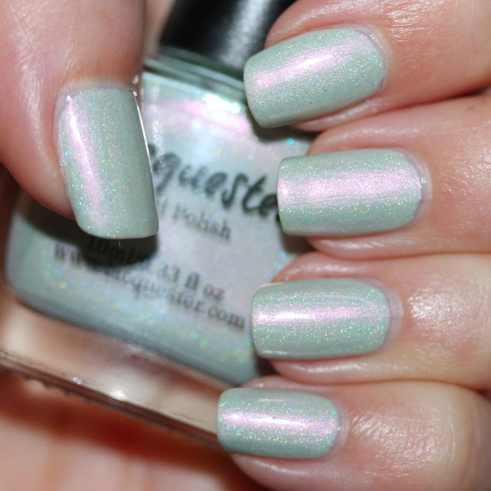 Sally Hansen Complete Care 4-in-1 Extra Moisturizing Nail Treatment / Lacquester Mint Condition (H) / Poshe Top Coat