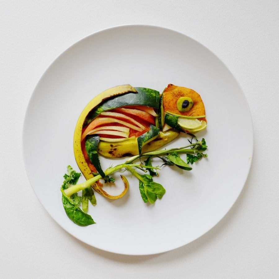 Food Photography Blog Best Equipment