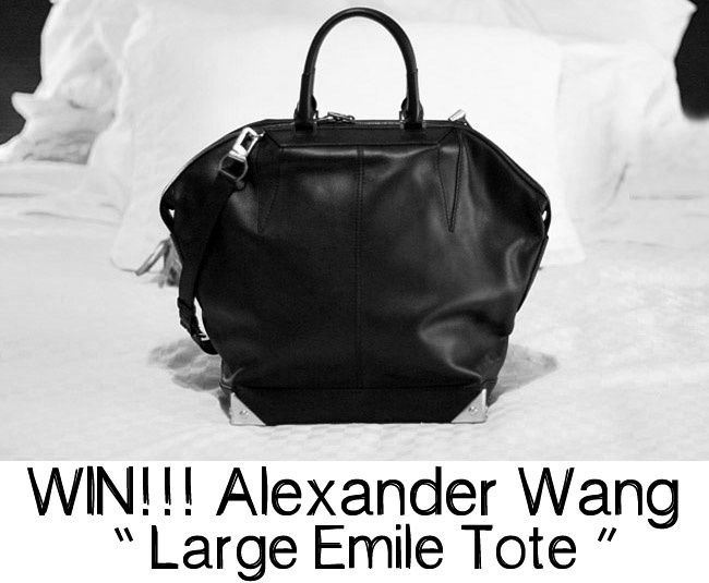 Alexander Wang Large Emile Tote, Fashion bags