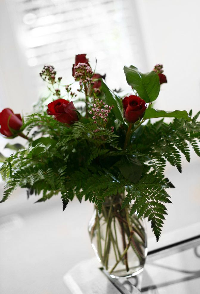 red roses, flowers, love