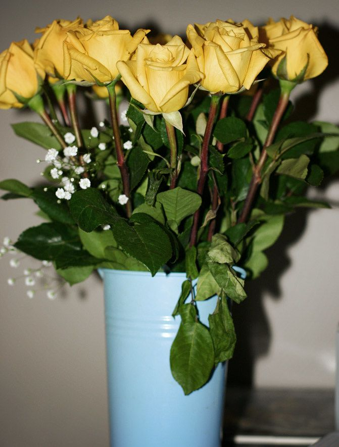 yellow roses, fashion, blair waldorf, gossip girl, carrie bradshaw