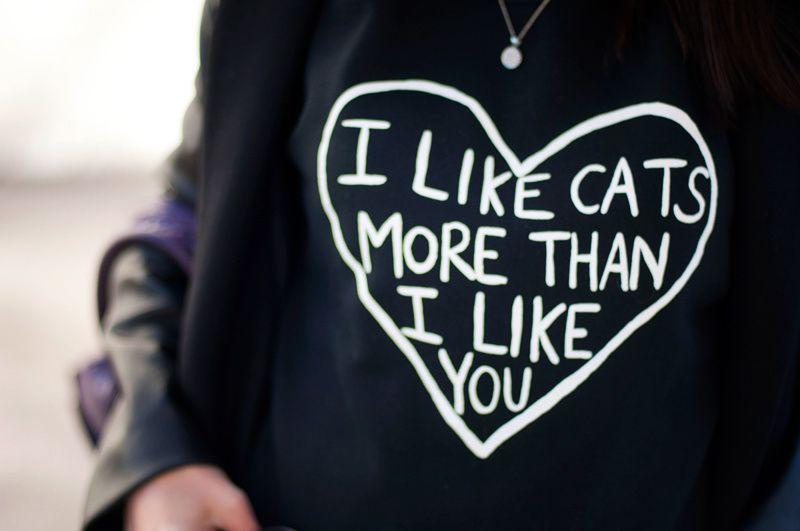 I LIKE CATS MORE THAN I LIKE YOU
