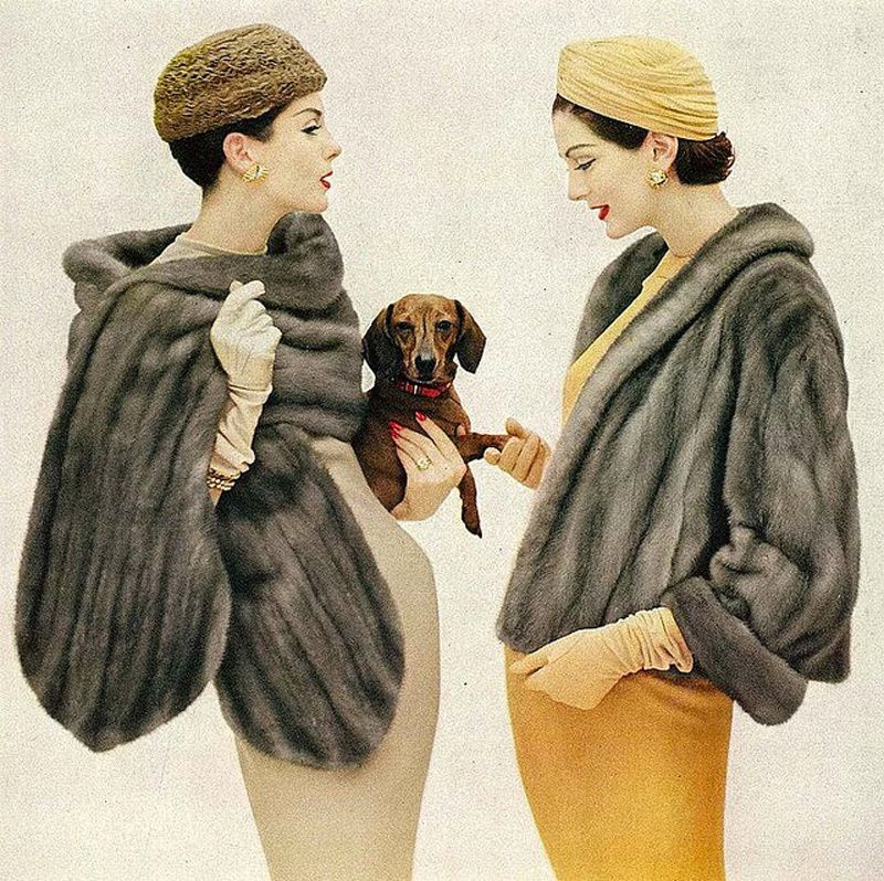 Commonly Used Furs for Garments
