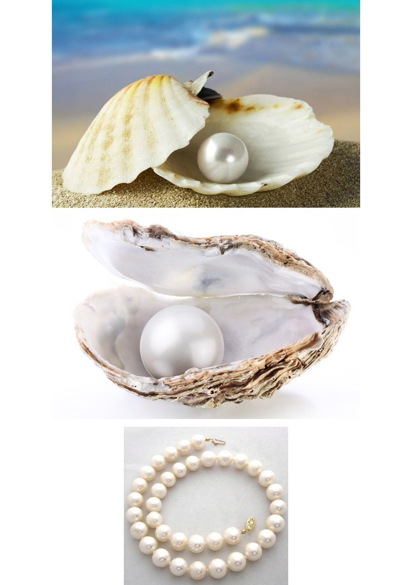 Behind the Mystery of the Pearl