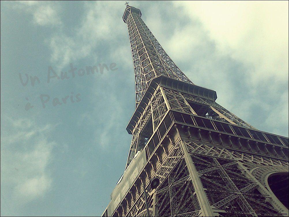 Et voilà le bouquet final.. Cette tour me donne des frissons !!! A bientôt Paris !