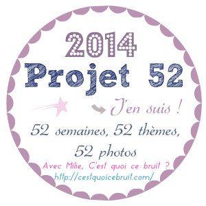 Projet 52. #1