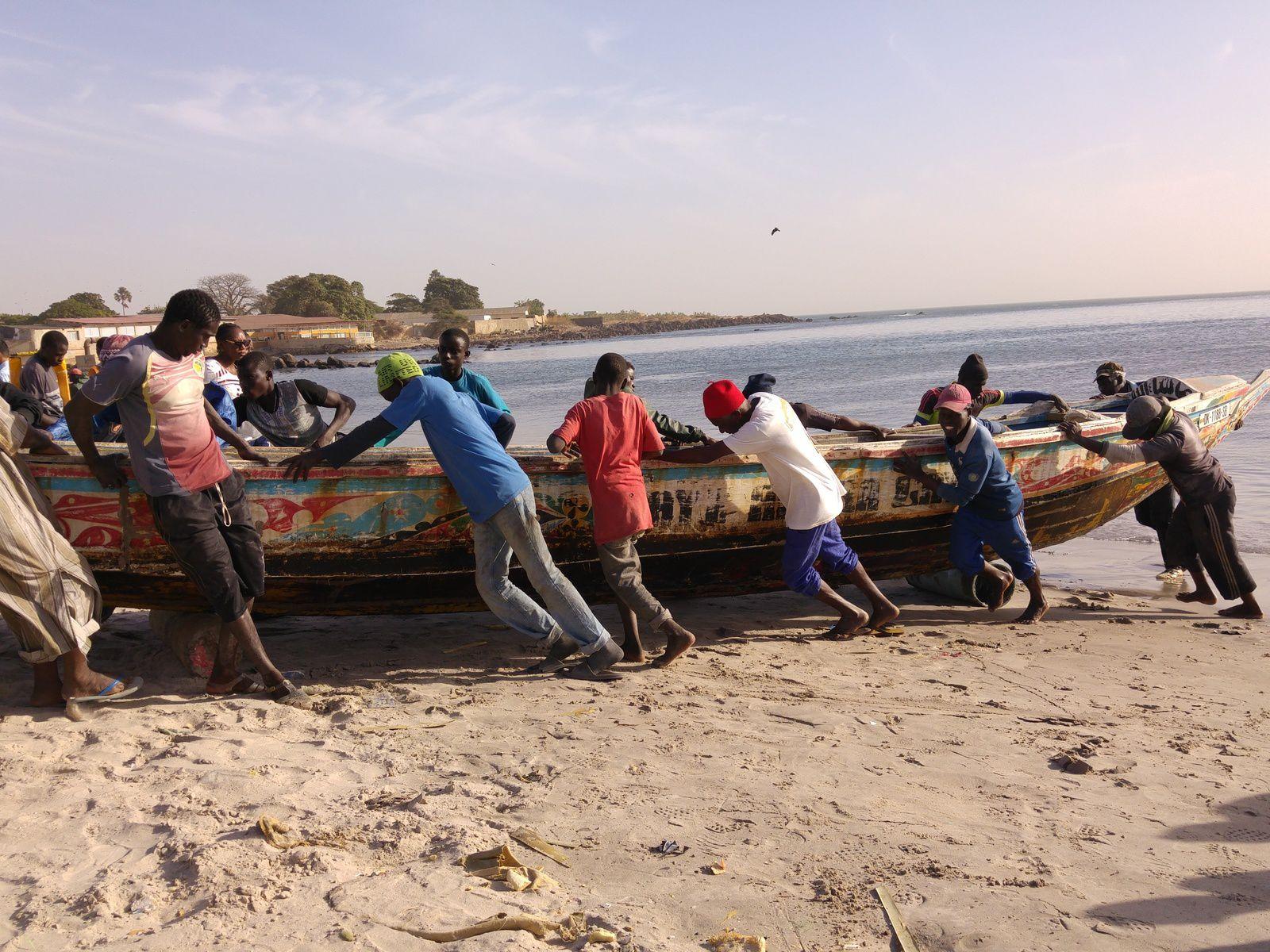 L'arrivée des pêcheurs de Soumbédioune, Dakar