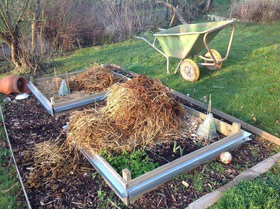 Pr paration des carr s de potager pour l 39 hiver l 39 oasis for Preparer son potager pour l hiver