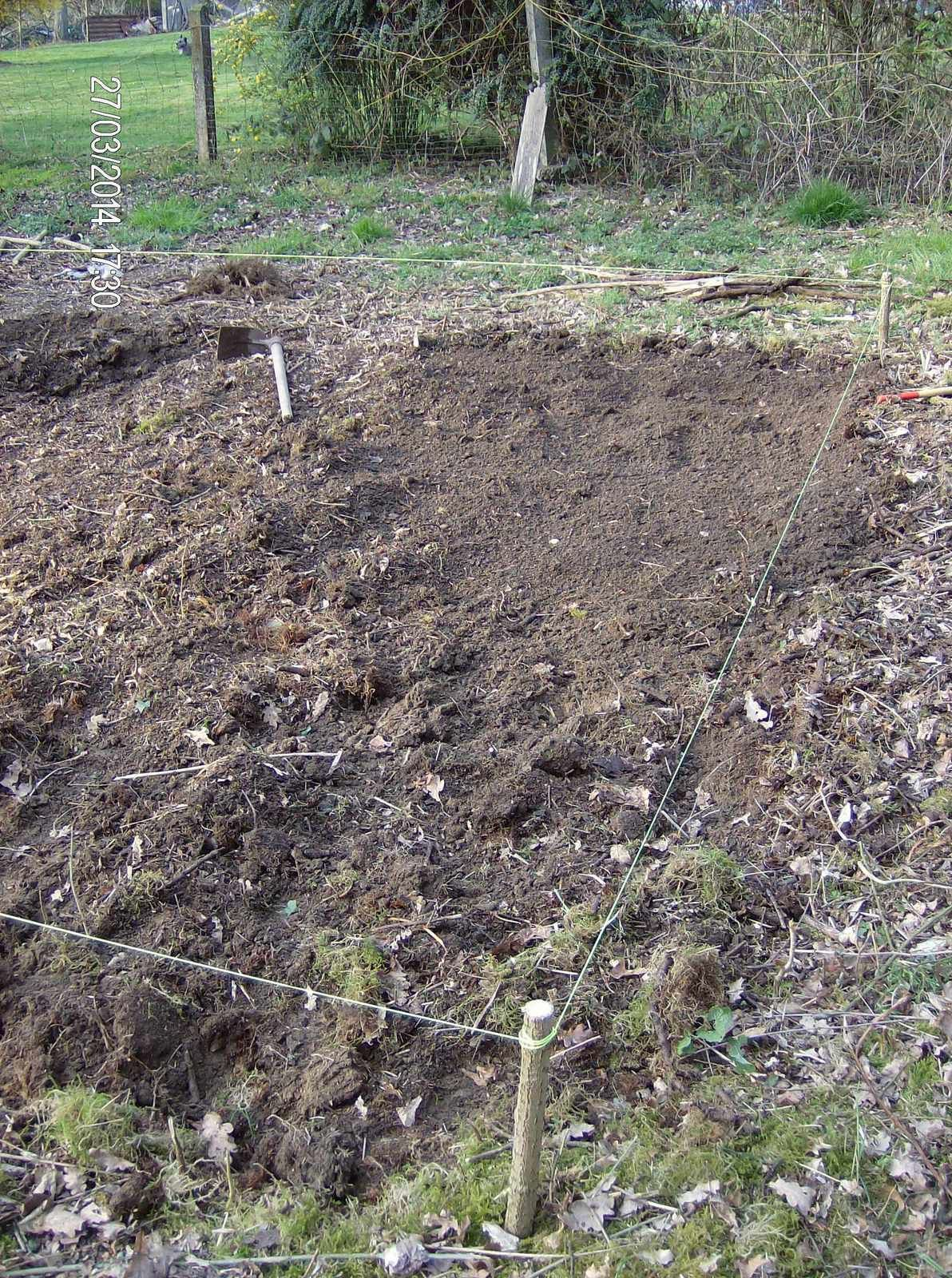 Extension du potager - phase 2