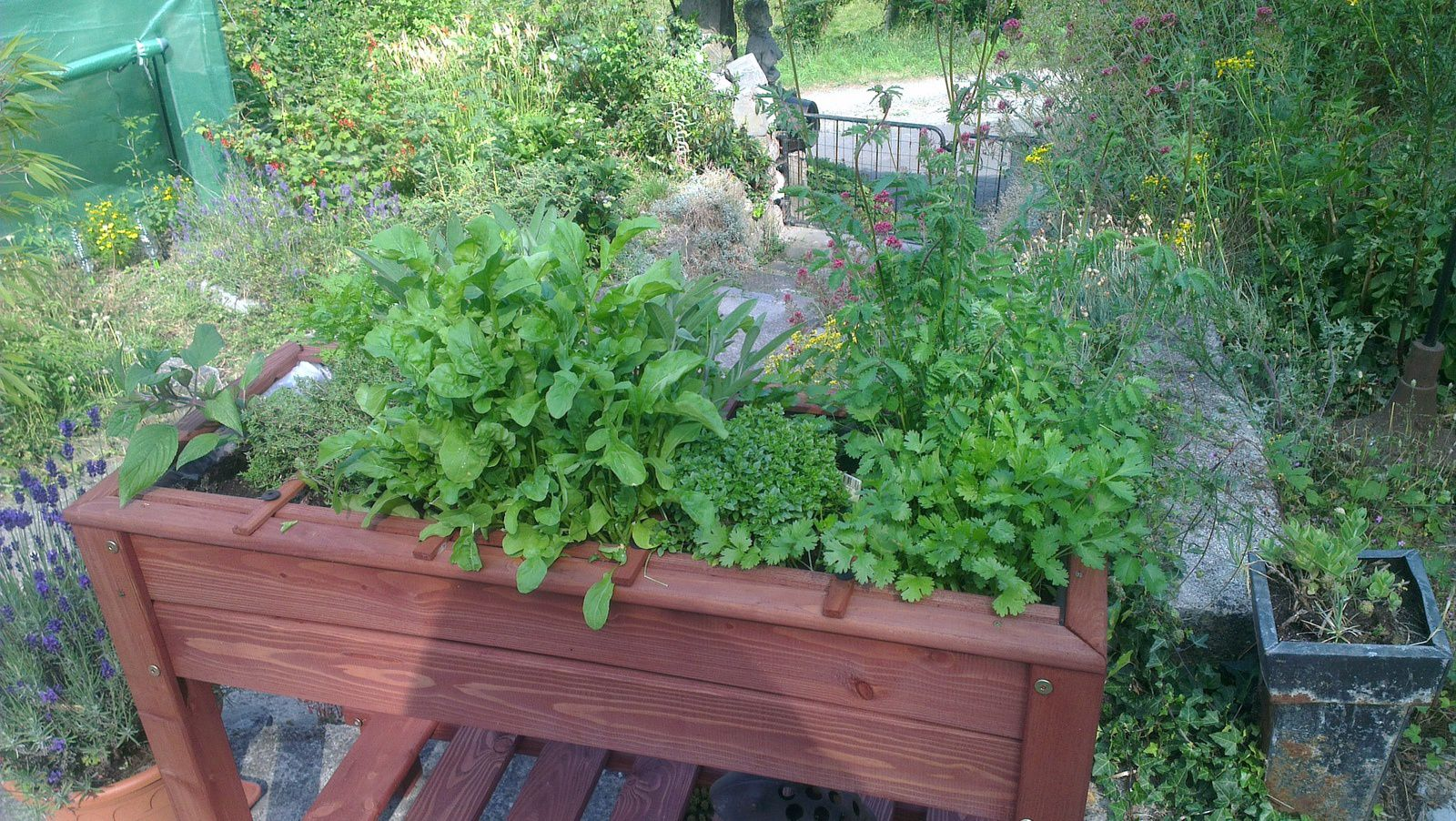 Petit jardin de cur l 39 oasis de vignamont for Agrementer un jardin