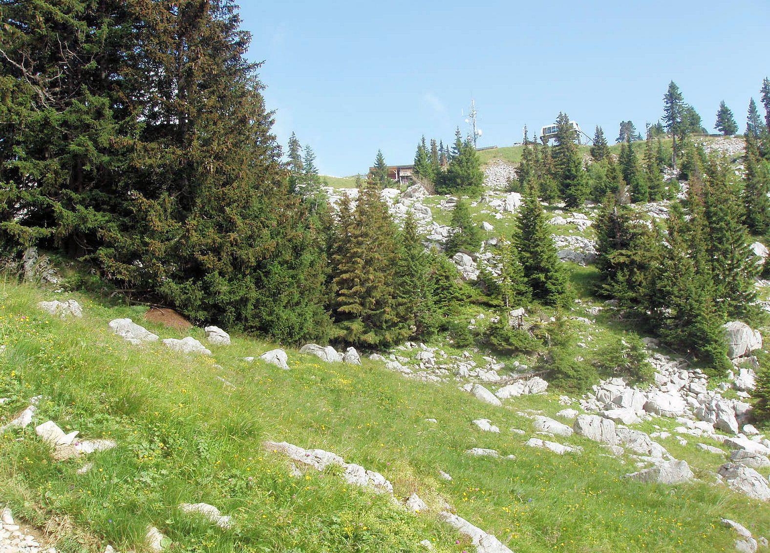 La gare d'arrivée du télésiège est en vue&#x3B; pose avant d'attaquer le sommet (dans la brume)