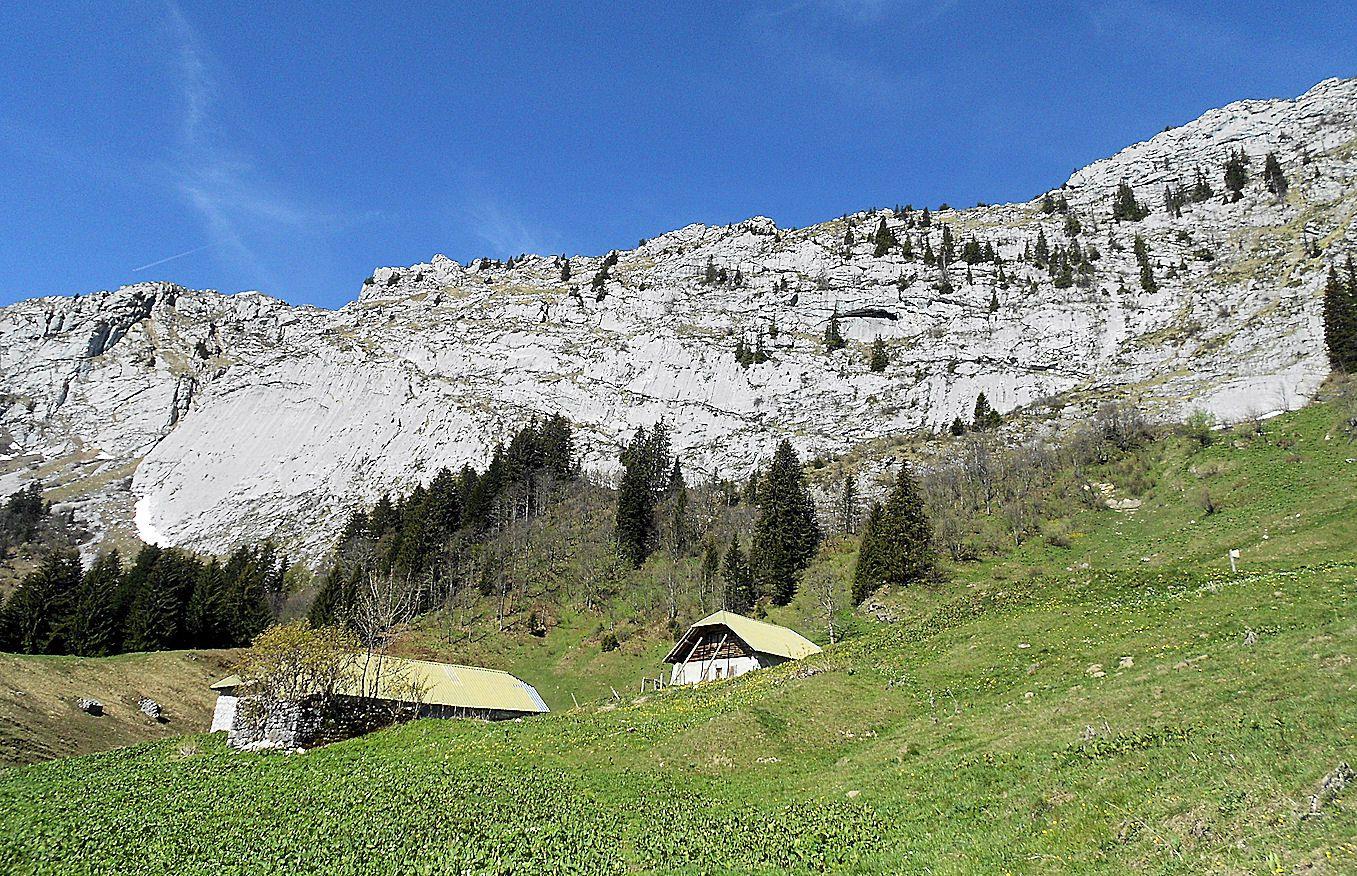 Chalets le Planay (1509 m)