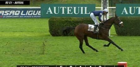 A Auteuil, LE TOINY s'impose à 7€00