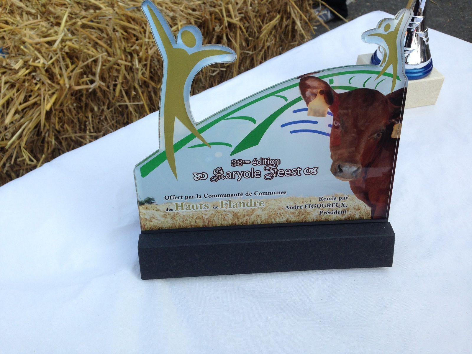 Ce trophée représente un jeune veau de l'élevage exposé en 2013. Trophée réalisé par une entreprise basée à Quaëdypre : Funé'Art.