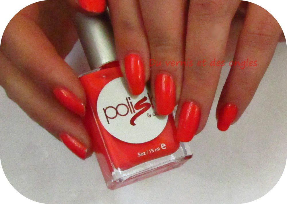 polish &amp&#x3B; co - Cautioni