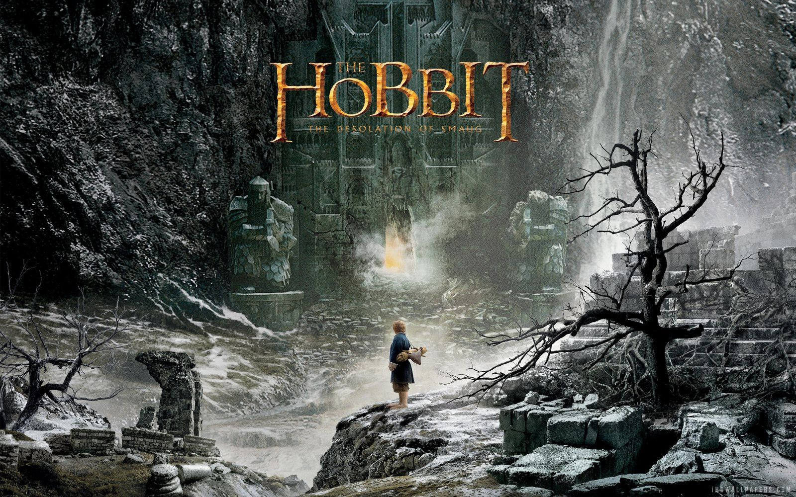Le Hobbit 2 - La désolation de Smaug