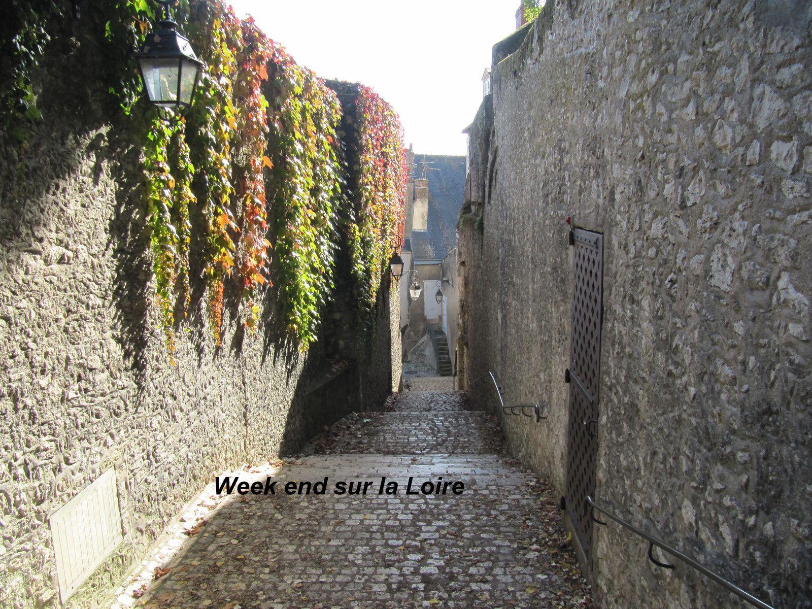 petite rue pavée menant au château de Blois