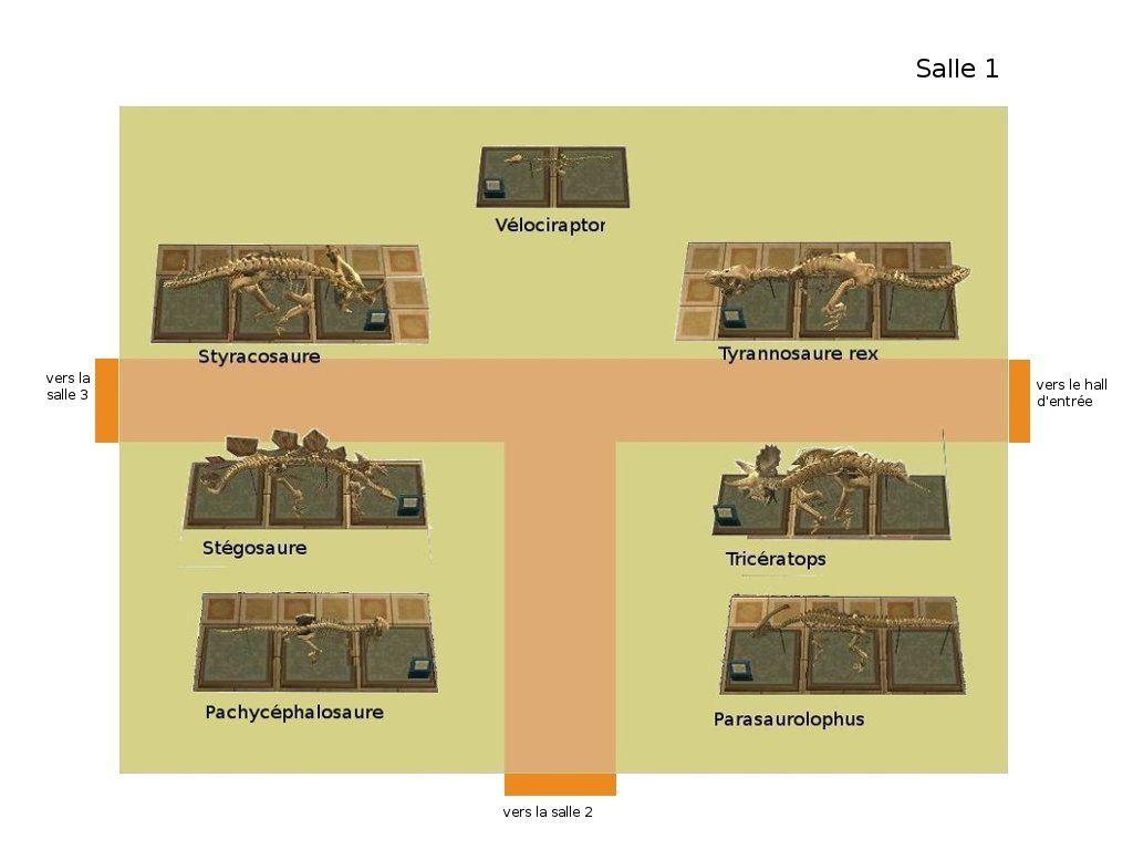 Le plan du Musée (section fossiles) :