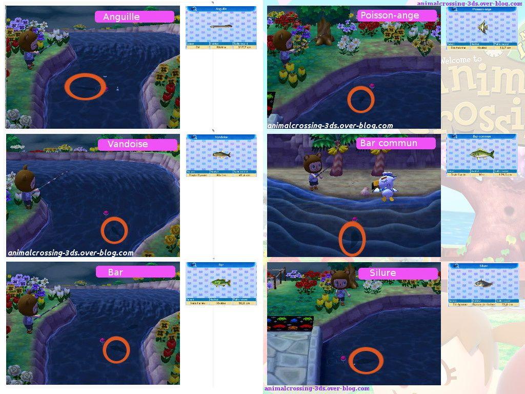 Les ombres des poissons (en cours de réalisation) :