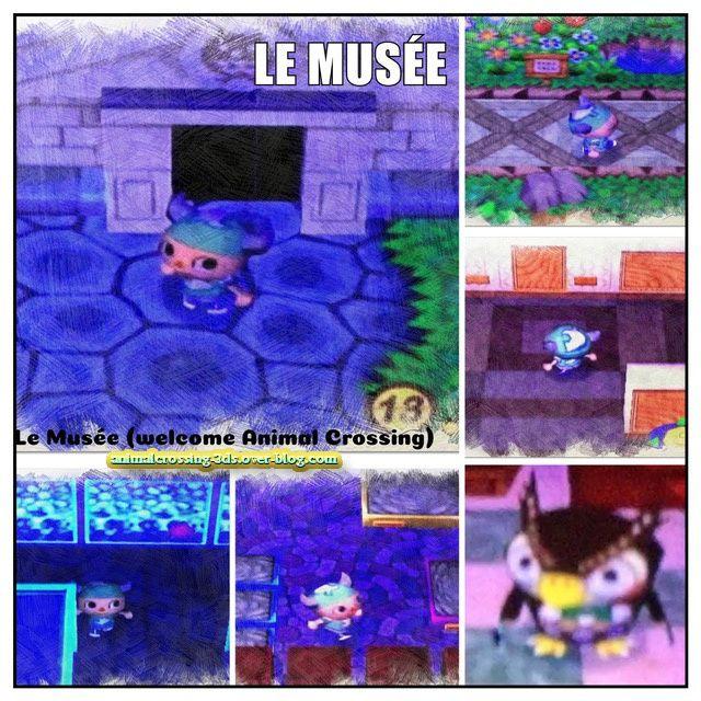 Le Musée dans le le jeu Welcome Animal Crossing