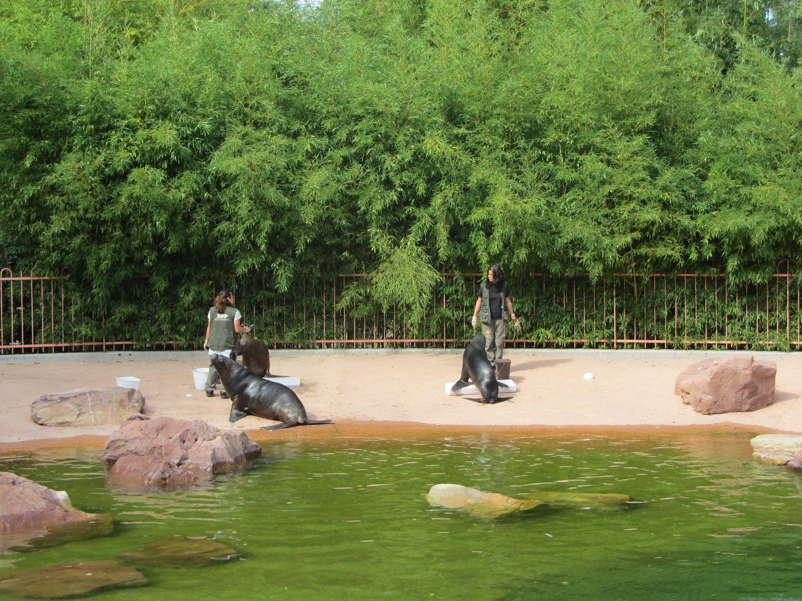 au Zoo de Mulhouse