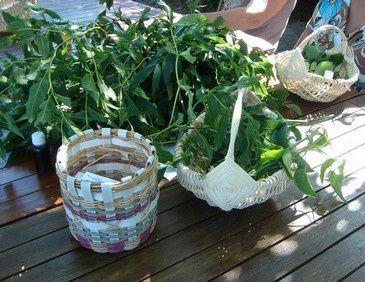 Journée vannerie et plantes
