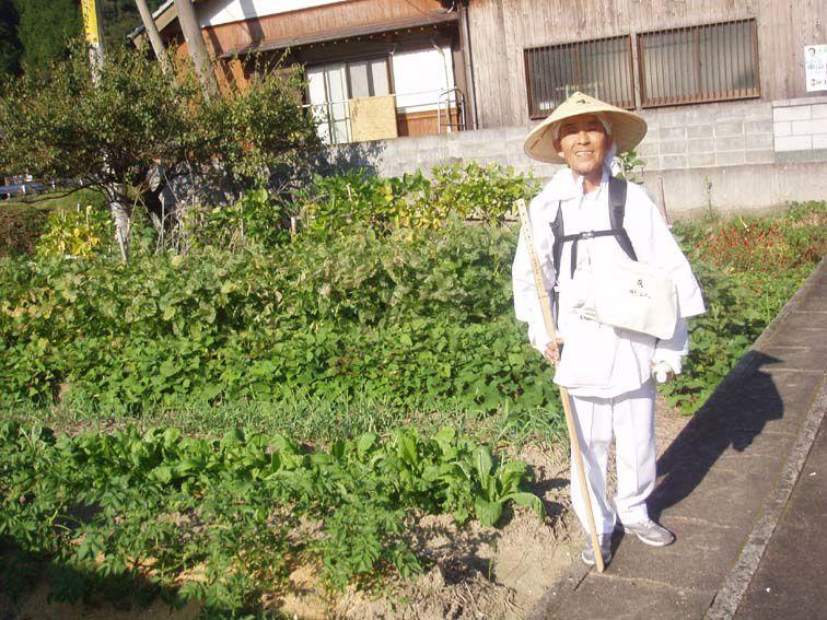 Quelques images - Shikoku